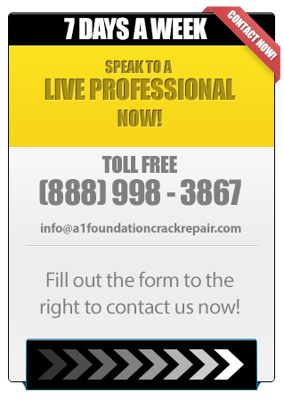 Speak to a Live Professional Now!