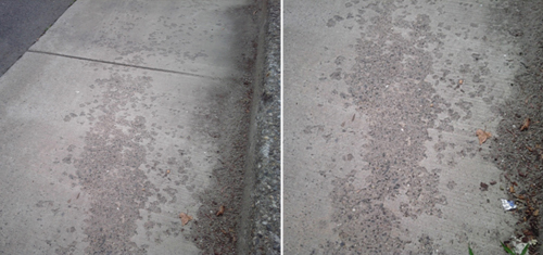 Spalling Concrete Repair Foundation