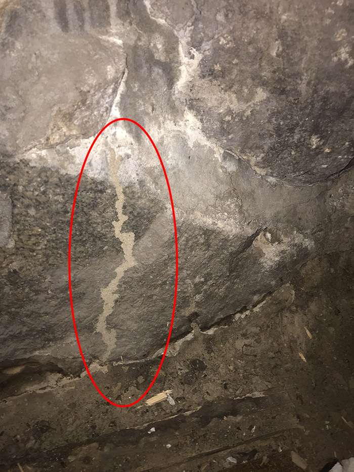 A1 Foundation Crack Repair - Termite tunnel  on stone foundation